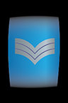 Petty Officer 1st Class - GSN